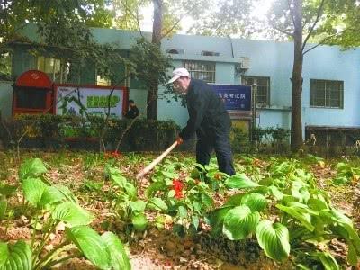 大爷义务打理撂荒绿地 历时三年小区荒地变花园