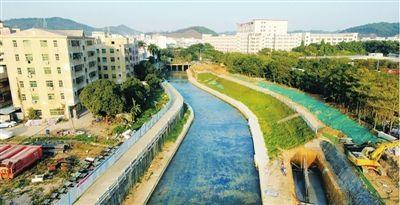 深圳今年底将基本消除黑臭水体