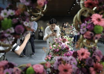 2020深圳菊花展开幕啦,全城最美金秋就在这里
