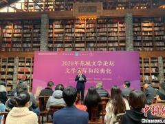 2020年花城文学论坛闭幕 聚焦文学代际和经典化