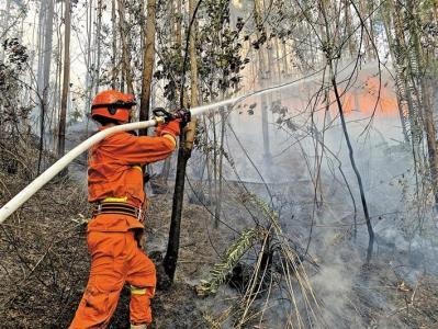 宝安区森林消防大队圆满完成深汕特别合作区森林火灾增援扑救任务