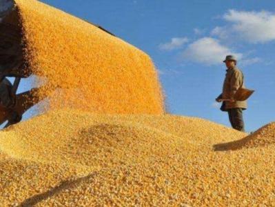 中国社科院国际形势报告:大宗商品供求异变或引发能源矿产粮食危机