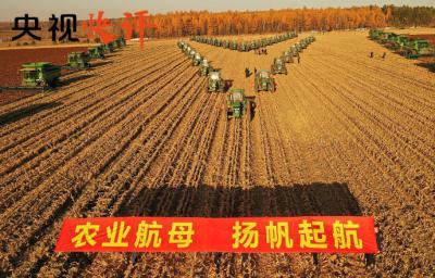 央视快评丨民族要复兴 乡村必振兴