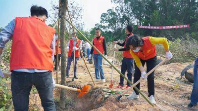 植树节:东湖公园增添450株宫粉紫荆,绿色环保融入罗湖人日常生活