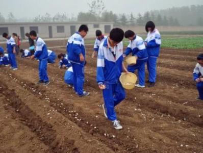江苏:将劳动素养作为毕业升学的参考依据