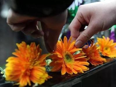 民政部:清明节假期三天累计接待祭扫群众6773万人次