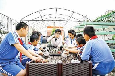 光明28所公办学校开展课后服务