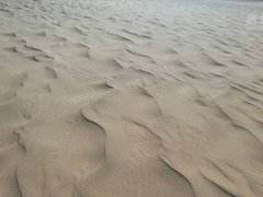 """被忽略的""""沙子危机"""""""