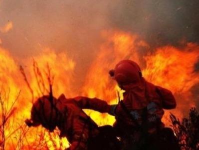 四川凉山木里县发生森林火灾:暂无人员伤亡,起火原因正调查