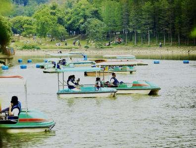 春游踏青好时节!清明假期深圳公园迎客269万余人次