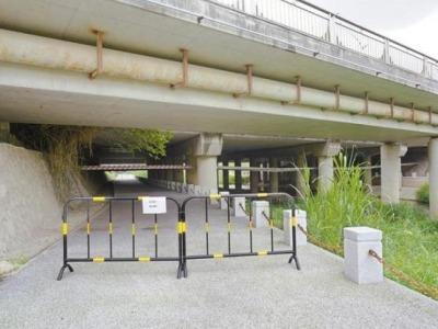 市民反映一桥洞里隐患多 管养单位:有问题马上改