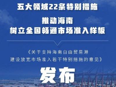 海南自贸港放宽市场准入特别措施发布,共22条