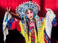 中国京剧表演艺术家孙萍获美国大学荣誉博士
