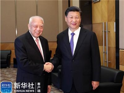 习近平会见全国政协副主席董建华