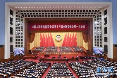 全国政协十三届一次会议举行第三次全体会议,14位委员发言