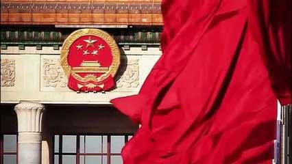 十三届全国人大设立10个专门委员会