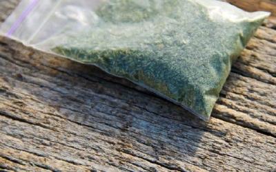 新西兰政府寻找合成大麻的解决办法