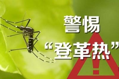 香港长洲因成为登革热感染源头 游客数量明显减少