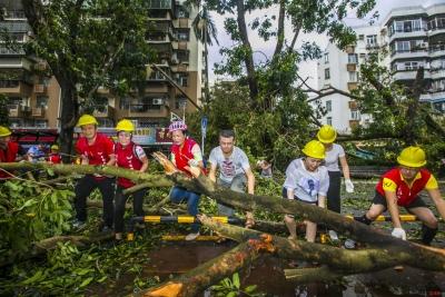 """穿越丛林的""""一点红""""!1万多人次志愿者助力台风后清障工作"""