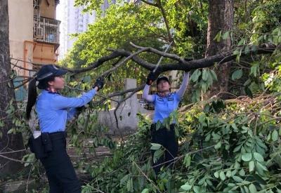 再次提醒,受台风影响产生交通违法不处罚!将延期至本周五
