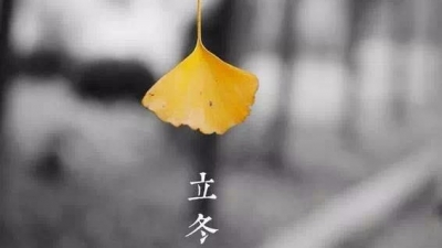 今日立冬:小春此去無多日 何處梅花一綻香