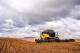 受贸易战影响,巴西今年对华大豆出口或创纪录