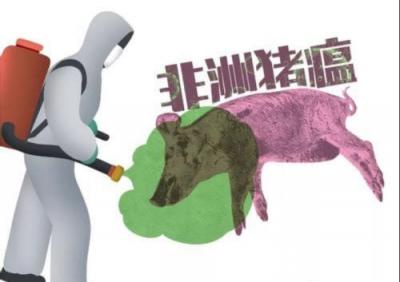 猪肉还能吃吗?10个问题带你科学了解非洲猪瘟