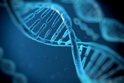 基因编辑被列为高风险生物技术 未经伦理审查不得开展临床研究