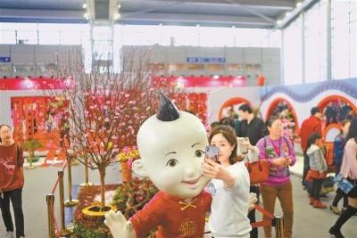 已有超過25萬人逛了深圳迎春花市!你逛了嗎?