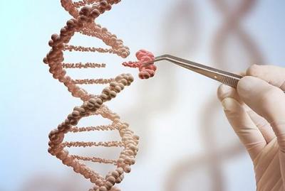 卫健委征求意见稿:基因编辑技术由国务院卫生主管部门审批