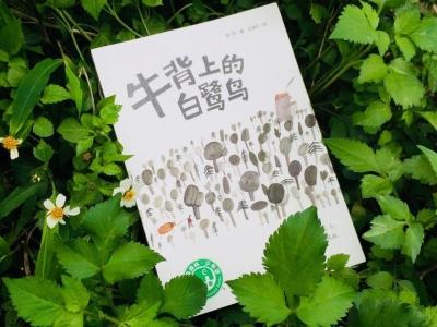 深圳儿童文学作家郝周谈新作:用中国元素摹写逆境中的光