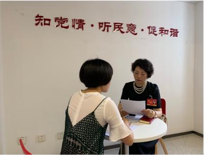 党代表接待活动 | 闵齐双代表为群众提供法律服务