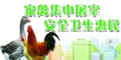 """宝安区福海街道严查""""家禽生鲜上市"""""""