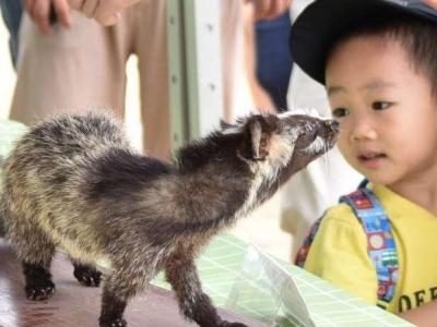 到这里了解多姿多彩的生物世界!深圳野生动物园等你来
