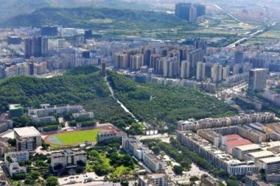 龙华区28个社会治理服务项目正式启动