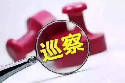 龙岗区委第五轮巡察各巡察组向51个单位党组织反馈问题