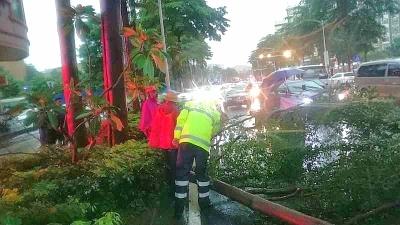 暴雨来袭之际,东莞全城动员:力争零伤亡