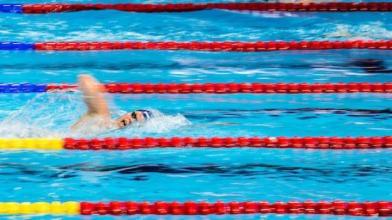祝贺!国际泳联世锦赛收官 中国队16金位列奖牌榜榜首