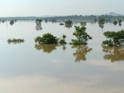 地方各级行政首长防汛抗旱中造成重大灾害将被追责