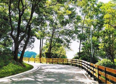 深圳最美马拉松绿道、网红三桥要和大伙儿见面啦!敢不敢来挑战?