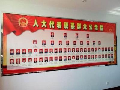 深圳市人大代表活动月正式启动 民生热点、难点问题受关注