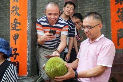 东莞拍卖百年菠萝蜜树果实,2.08万元悉数捐赠慈善