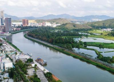 """深圳主要河流水质全面好转,让水环境从""""短板""""变""""城市名片"""""""