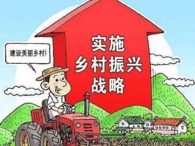 广东推进乡村振兴战略实绩考核 深圳的成绩就一个字:好!