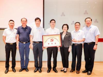 深圳市照明与显示工程行业协会党委成立