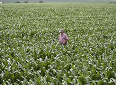 农业农村部官员:美农业州访问行程调整与经贸磋商无关