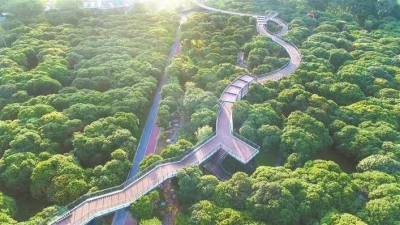 @深圳人 中秋佳節逛公園 你需要的信息都在這里了!
