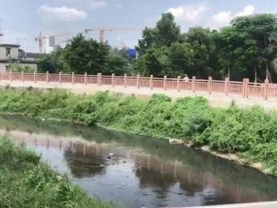 文明施工,实现正本清源全覆盖!龙岗40条河道水质明显改善