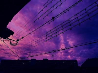 强台风海贝思今晚登陆日本 多地天空变紫