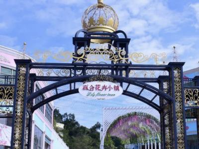 赏花插花去!百合花卉小镇举办首届百合花艺大赛